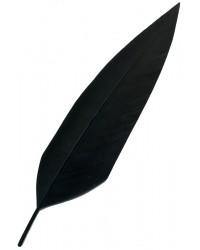 Penna nera per cappello alpino